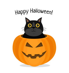 happy halloween of cat celebrating vector image