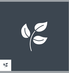 herbal medicine related glyph icon vector image