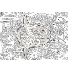 High detailed moon fish vector