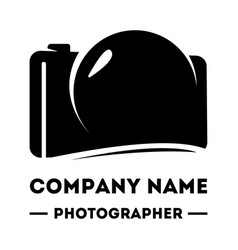 simple logotype for a photographer abstract vector image