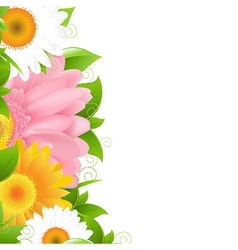 Flower Gerbers And Leaves vector image vector image