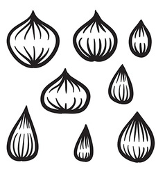 Hand Drawn Onion Set vector image vector image