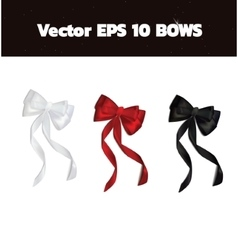 Realistic bows for gift card desing vector image
