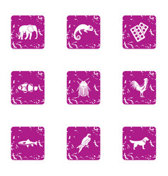 African wildlife icons set grunge style vector