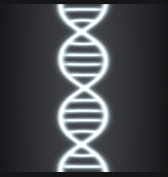 bright concept dna vector image