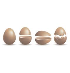 chocolate chicken egg vector image