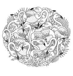 circle shape coloring page with funny flamingos vector image
