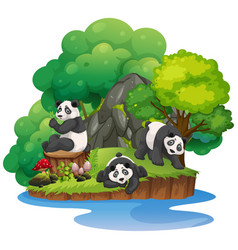 Isolated nature island with panda vector
