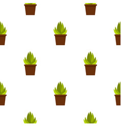 succulent in flower pot pattern seamless vector image
