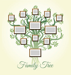 family tree with photo frames vector image