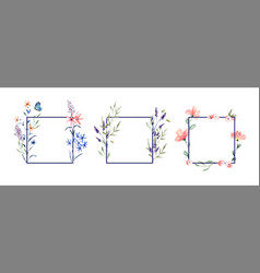 floral watercolor flower frame set isolated vector image