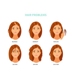 hair problems vector image