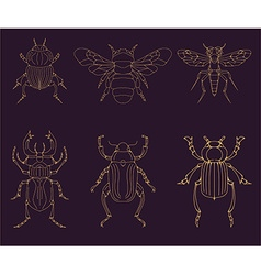 set insects design elements vector image
