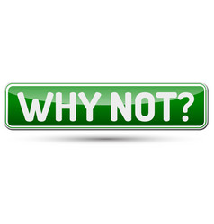 why not - abstract beautiful button with text vector image
