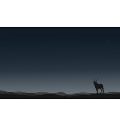 One Antelope silhouettes in hill vector image vector image