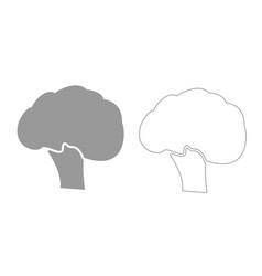 Broccoli grey set icon vector