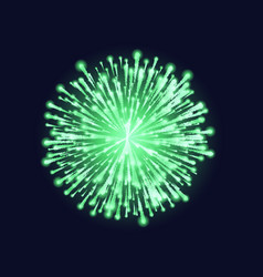 firework isolated beautiful green firework on vector image