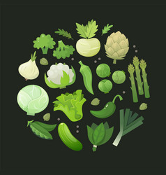 Fresh green vegetables arranged in circle vector