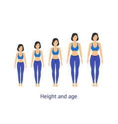 height and age stage of growth from girl to woman vector image