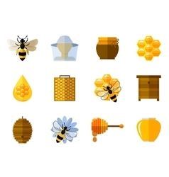 Honey and bee icons in flat set vector