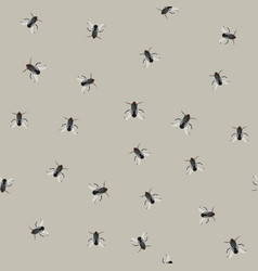 Seamless pattern with flies vector