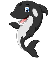 Cute killer whale cartoon vector image