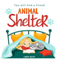animal shelter design poster with child cat and vector image