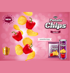chips ads 3d and packaging vector image