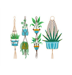 green macrame house plant decoration set vector image