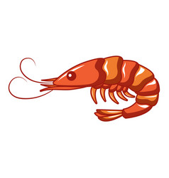 ocean shrimp icon cartoon style vector image
