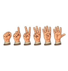 Set of gestures of hands counting from zero to vector image