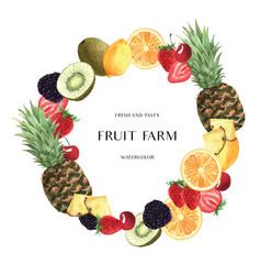 Tropical season fruits wreaths banner design vector