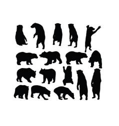 wild bear set silhouettes vector image