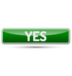 Yes - abstract beautiful button with text vector