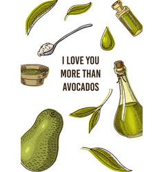avocado card green template banner organic vector image