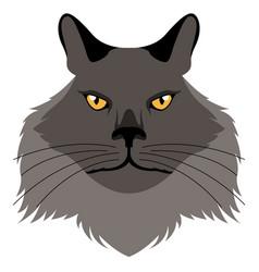 Chantilly tiffany cat avatar cat breeds vector