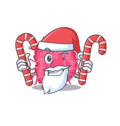 friendly pathogenic bacteria in santa cartoon vector image