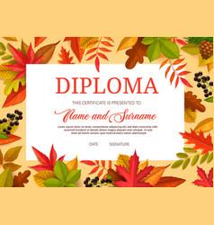kids diploma educational certificate for school vector image