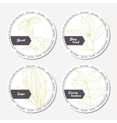 Set of stickers for package design with sage bay vector