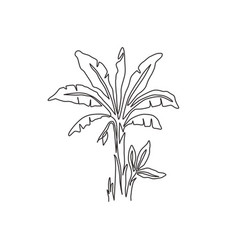 single continuous line drawing fresh and vector image