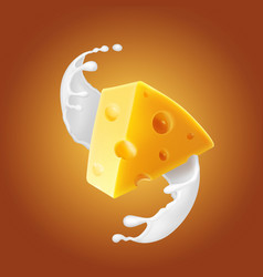 triangular piece of cheese in milk splash vector image