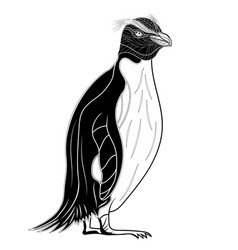 penguin emperor bird head as symbol for mascot or vector image vector image