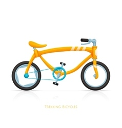 Trekking Bicycles Two vector image vector image