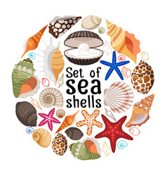 aquatic badge with sea pearl shells vector image