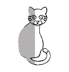 cat cute pet icon vector image