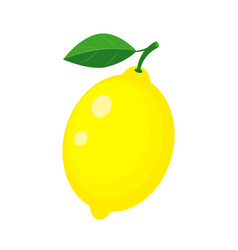 colorful whole yellow lemon with green leaf vector image