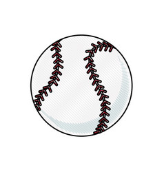 drawing baseball ball sport competition element vector image