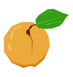Isolated geometric peach vector