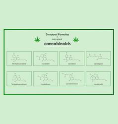 structural formulas main natural cannabinoids vector image