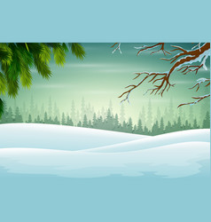 Winter background with branch christmas tree vector